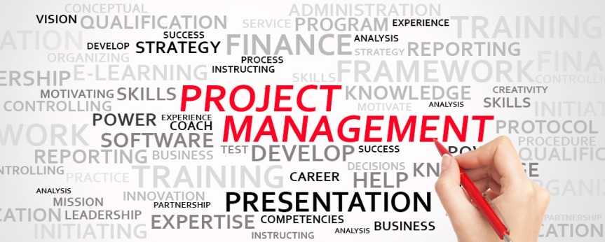 Project Management Professional (PMP) Certificate: Lessons Learned