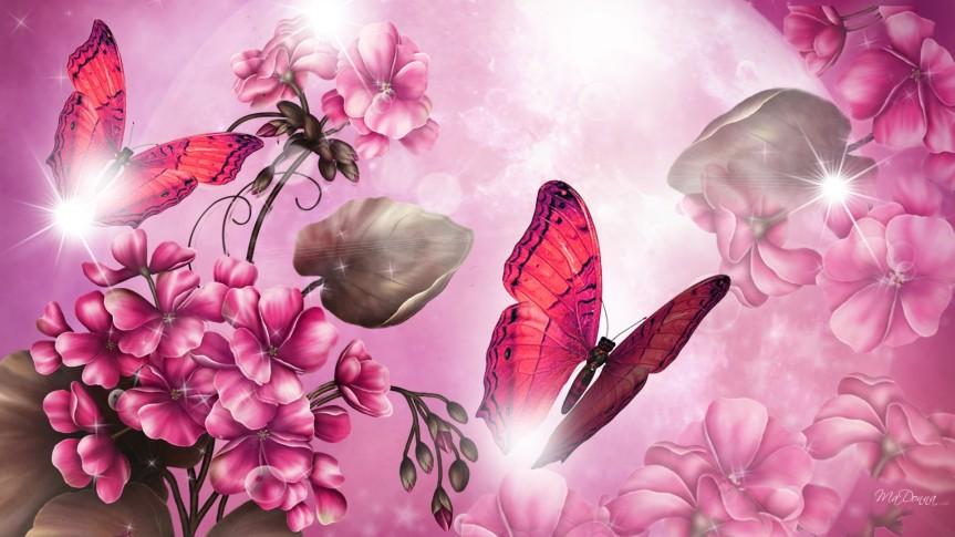 اكتب لأن أثر الفراشة لا يرى… أثر الفراشة لايزول