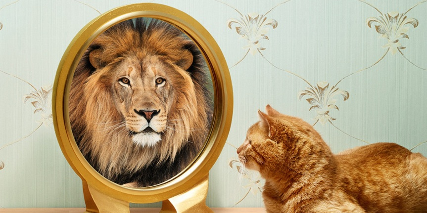 You Must See Value in Yourself to Add Value to Yourself: The Law ofMirror